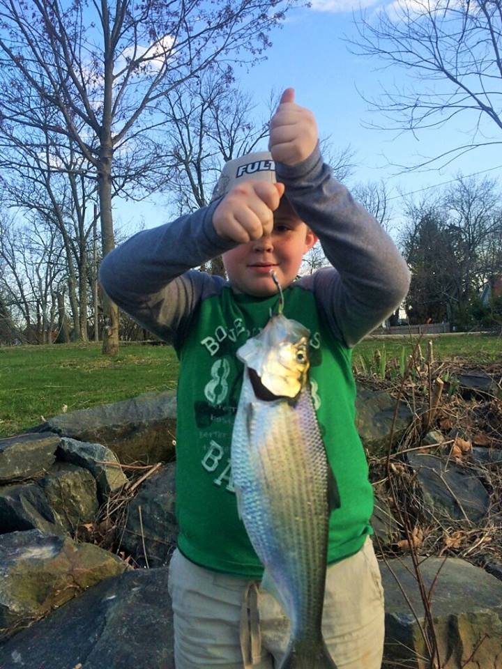 Braeden Brown my grandson... mugging the Hickory Shad like a pro. fishing a Tony spoon with the barb mashed down. Great idea for kids! Easy on the fish too!