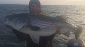 Sarge's Bait and Tackle Chesapeake Bay Fishing Report - Striper