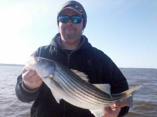Chris Brown with one ofmany schoolie size fish caught this April
