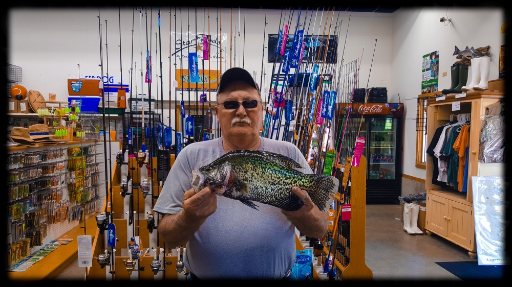 Sarges Bait and Tackl Chesapeake Bay Fishing Report - Crappie