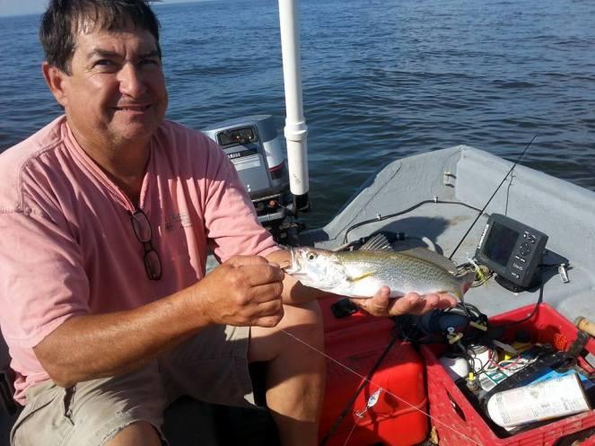 upper-bay-weakfish