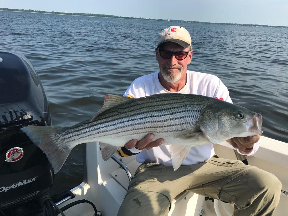 Mid Bay Rockfish 19