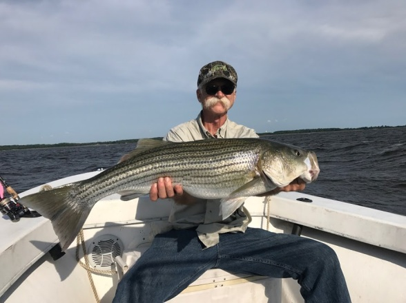 Mid Bay Rockfish 25