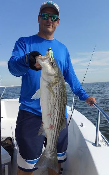 Myco fish 3