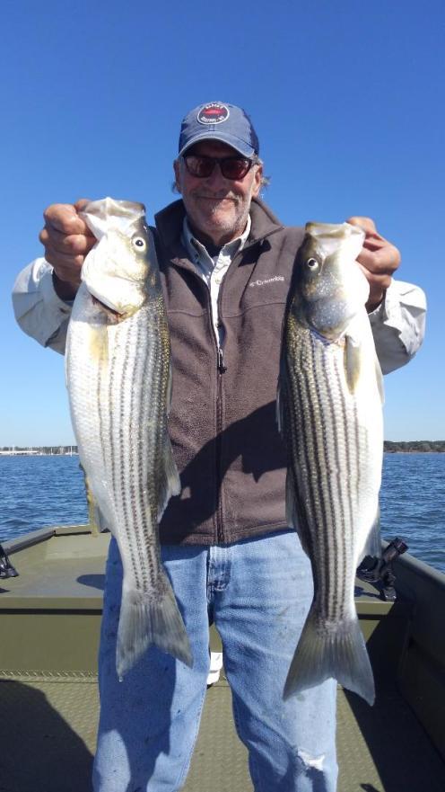 Fall Rockfish 2