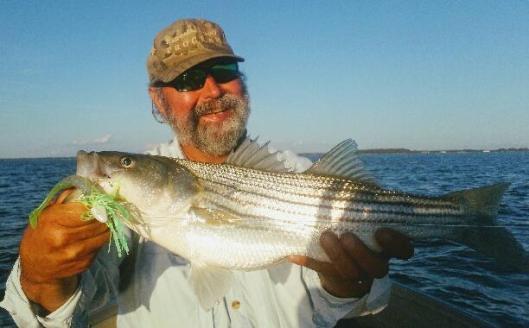 November Rockfish 11