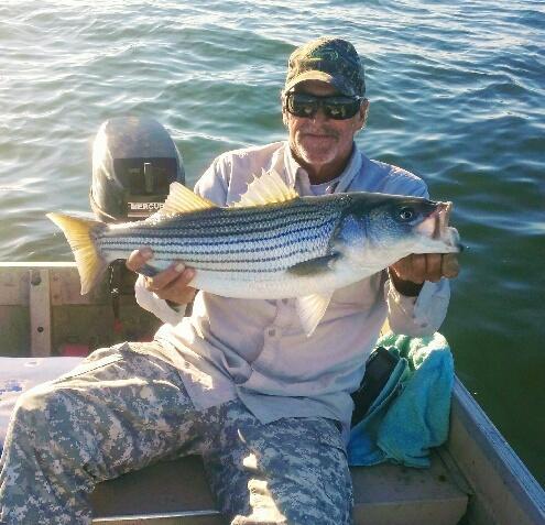 November Rockfish 15