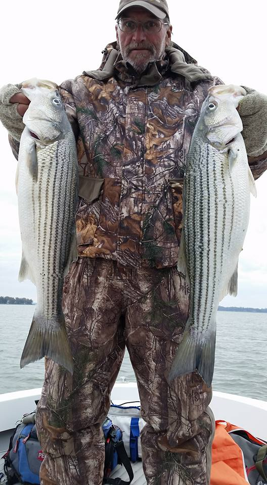 November Rockfish 30