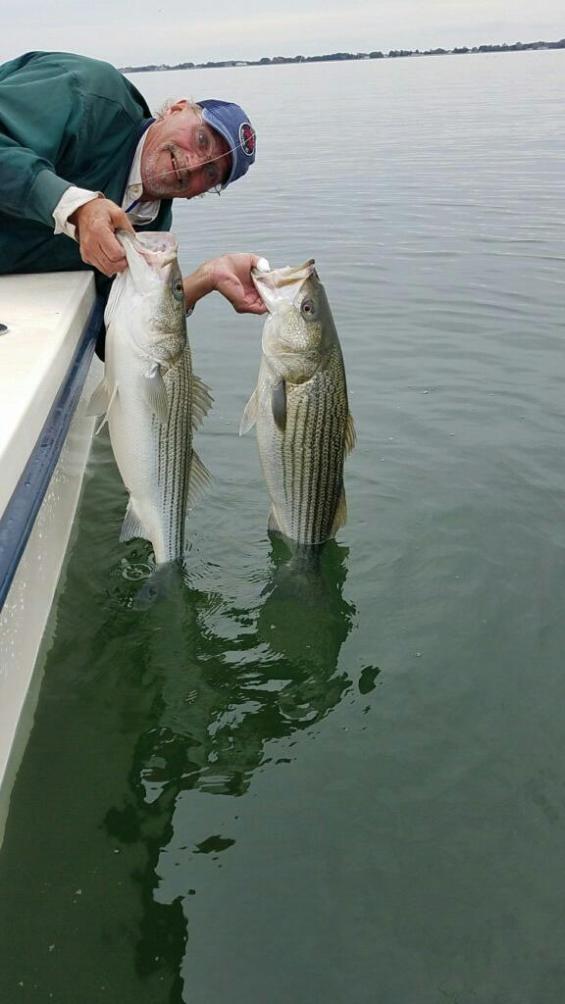 November Rockfish 9