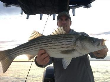 October Rockfish 2