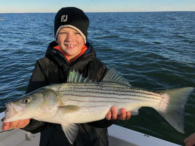 November Rockfish 27