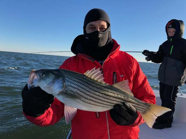 November Rockfish 39