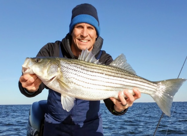 November Rockfish 42