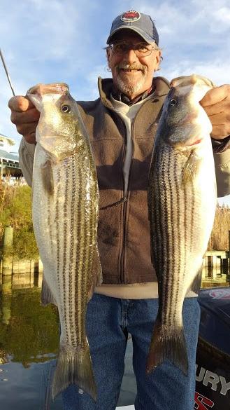 November Rockfish 45