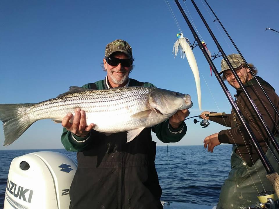 November Rockfish 46