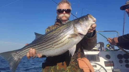 November Rockfish 47