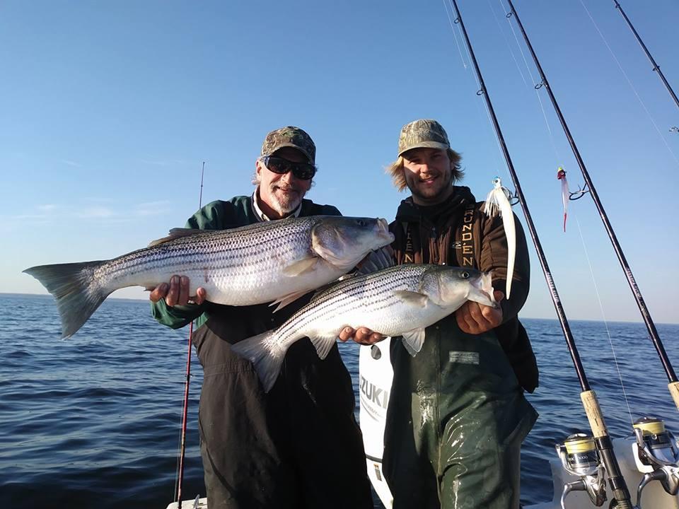 November Rockfish 49