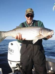 November Rockfish 50